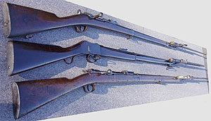 Martini rifle in 577/45 by the Field Rifle Company